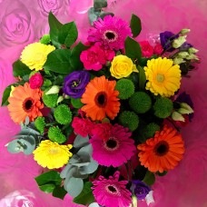 Bright Coloured Germini Hand Tied